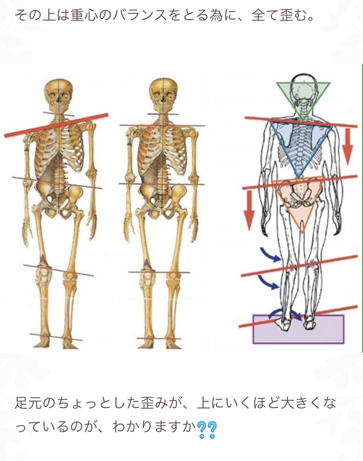 足は身体の土台です❣️