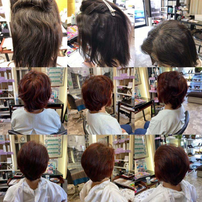 髪が艶々、くせ毛が扱い易くなる髪質改善法