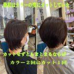髪の悩みが改善していくならば、カットは時々で良い