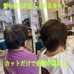 髪の根本を立ち上げる