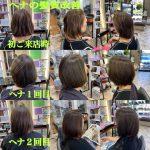 ヘナによる髪質改善履歴
