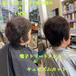 髪の傷みとくせ毛の改善