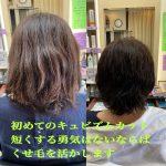 初めてのキュビズムカット、くせ毛を活かす