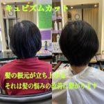 髪の悩みの改善は、根元の立ち上がり