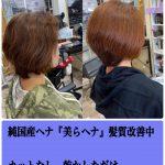髪質改善中